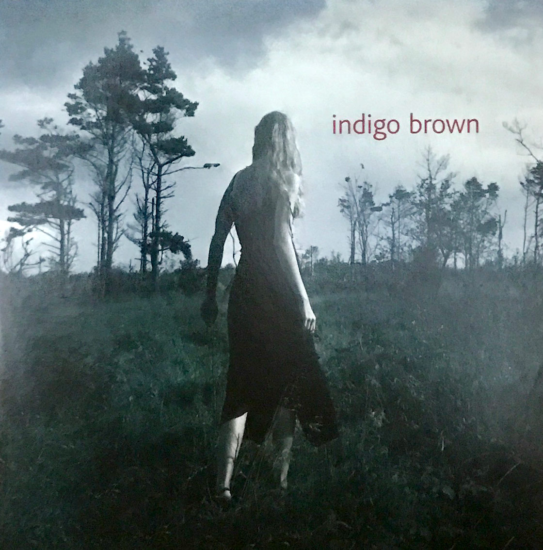 indigo-brown-1