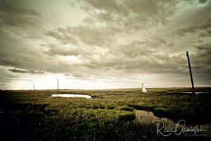 Mød fotografer og Fotokunst online
